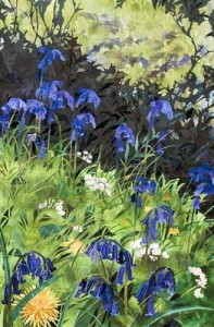 bluebell-art