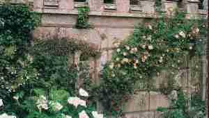 estate-gardens