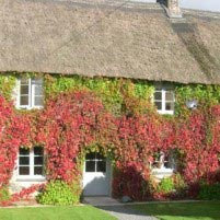 trelowarren-estate-cottages